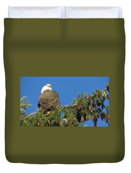 Bald Eagle Sunbathing Duvet Cover