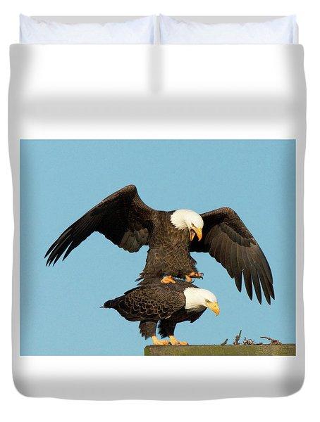 Bald Eagles Mating Duvet Cover