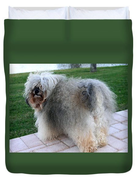 ball of fur Havanese dog Duvet Cover by Sally Weigand