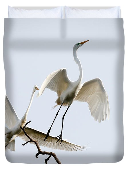 Sky Dance Duvet Cover