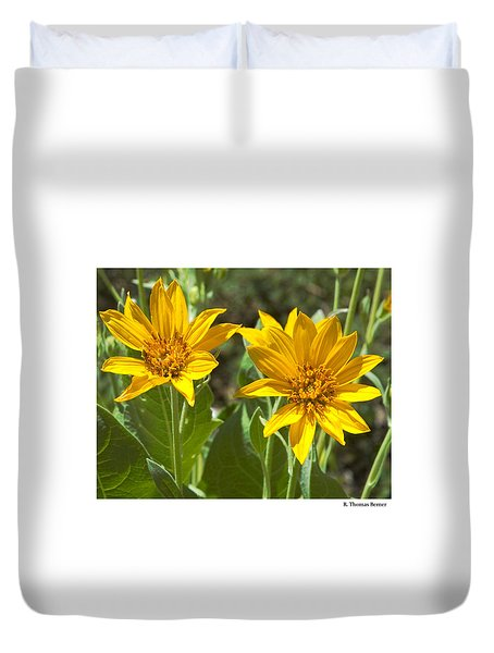 Duvet Cover featuring the photograph Balsamroot by R Thomas Berner