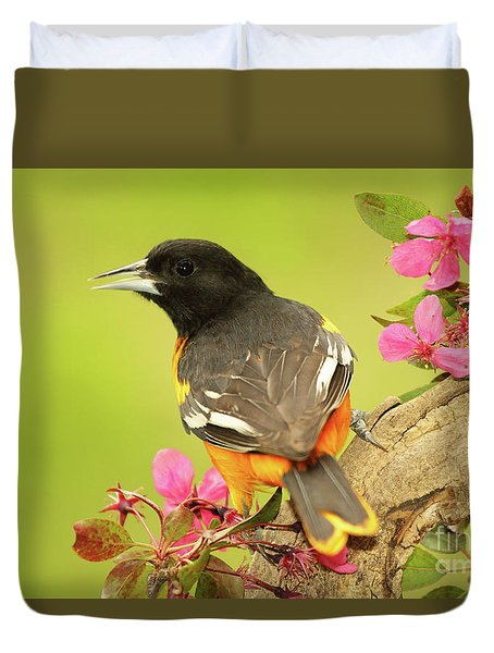 Baltimore Oriole Among Apple Blossoms Duvet Cover