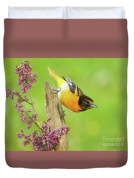 Baltimore Oriole Leaning Away Duvet Cover