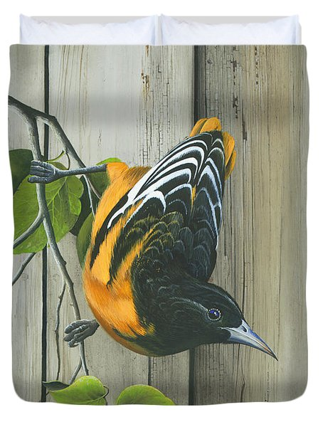 Baltimore Oriole Duvet Cover