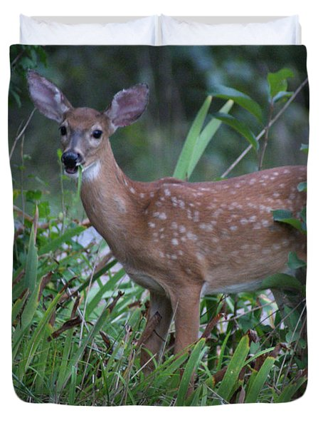 Duvet Cover featuring the photograph Bambi by Rick Friedle