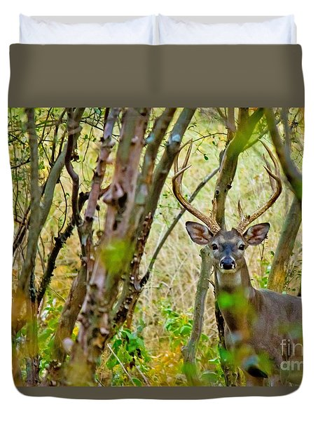 Bambi's Father Duvet Cover