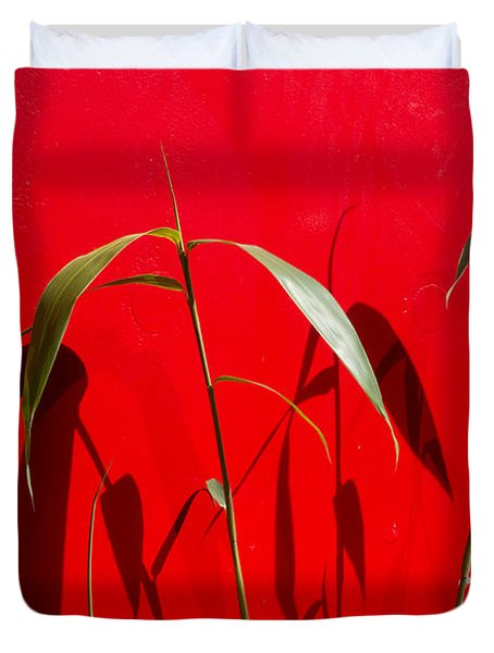 Bamboo Against Red Wall Duvet Cover