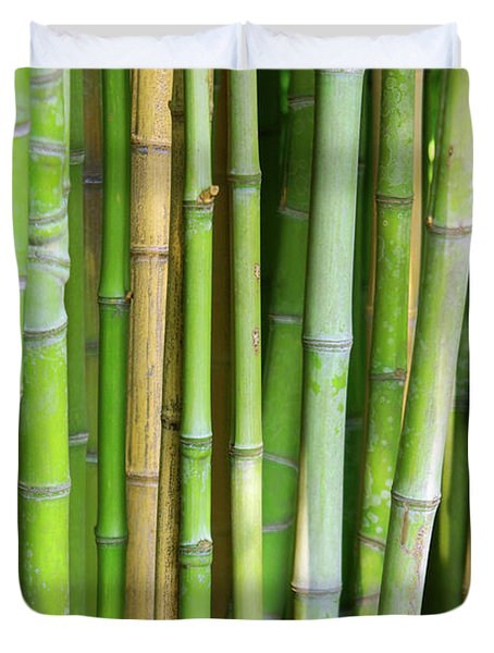 Bamboo Background Duvet Cover by Carlos Caetano