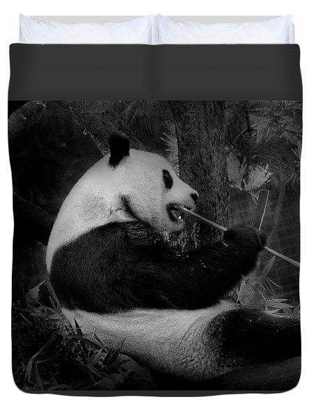 Bamboo, Bamboo, Bamboo Duvet Cover