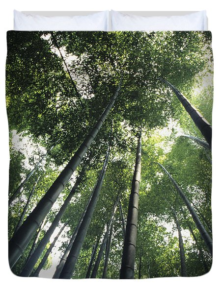 Bamboo Forest Duvet Cover by Mitch Warner - Printscapes