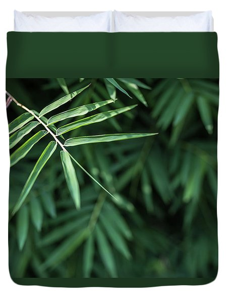 Bamboo Leaves Background Duvet Cover by Jingjits Photography
