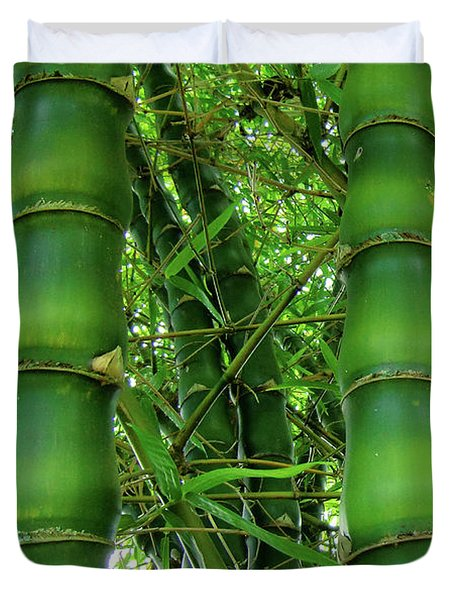Bamboo Duvet Cover by Loriannah Hespe