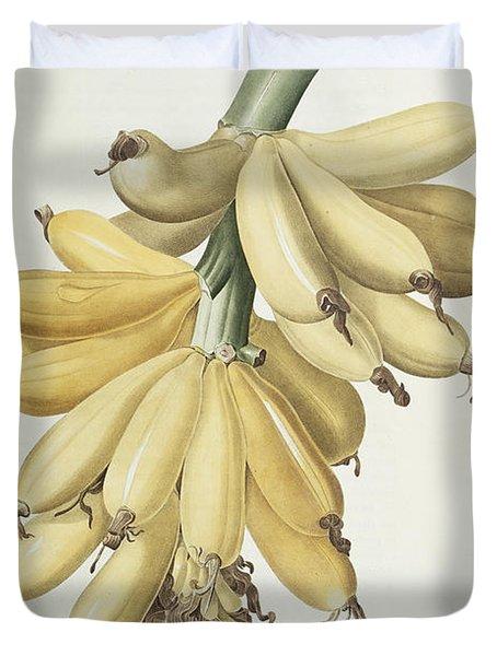 Bananas Duvet Cover by Pierre Joseph Redoute