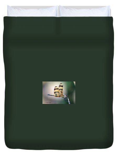 Banded Pennant Duvet Cover