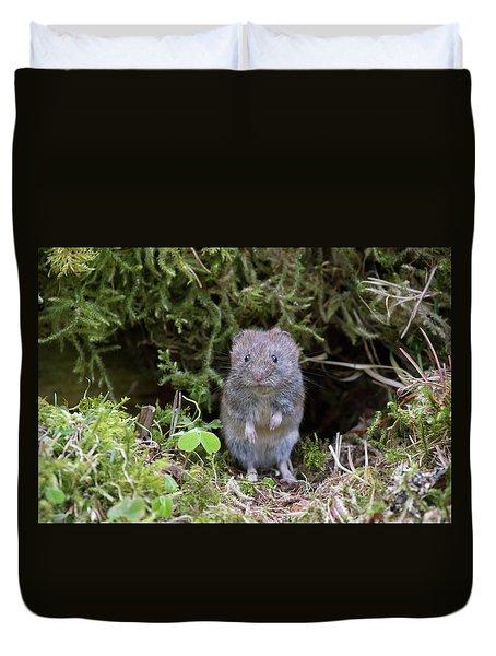 Duvet Cover featuring the photograph Bank Vole - Scottish Highlands by Karen Van Der Zijden