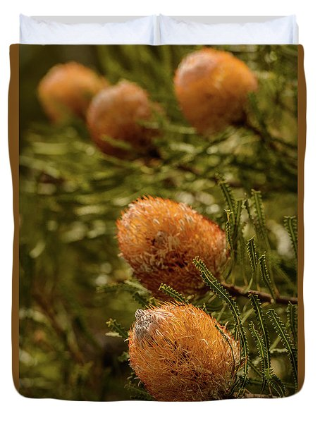 Duvet Cover featuring the photograph Banksia by Werner Padarin