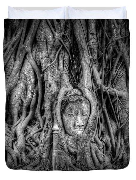 Banyan Tree Duvet Cover by Adrian Evans