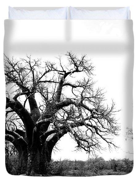 Baobab Landscape Duvet Cover by Bruce J Robinson