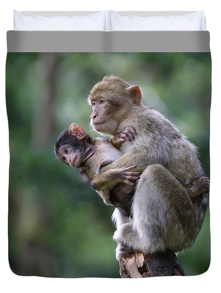 Barbary Macaque Mother And Baby Duvet Cover