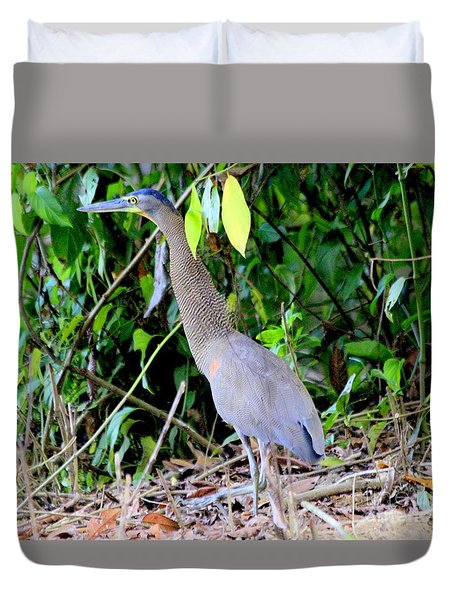Bare-throated Tiger Heron Duvet Cover