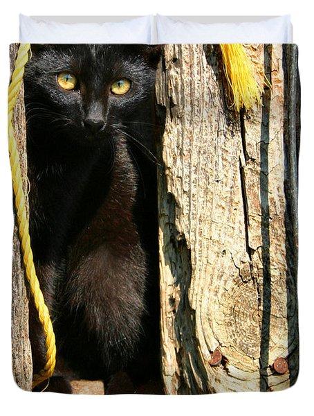 Barn Cat Duvet Cover by Kristin Elmquist