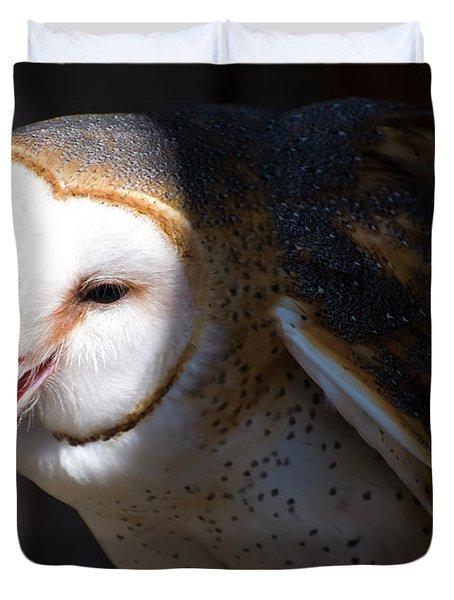 Barn Owl 1 Duvet Cover
