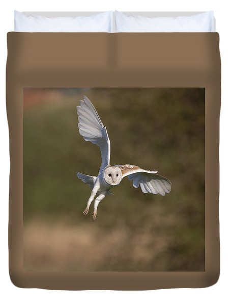 Barn Owl Cornering Duvet Cover
