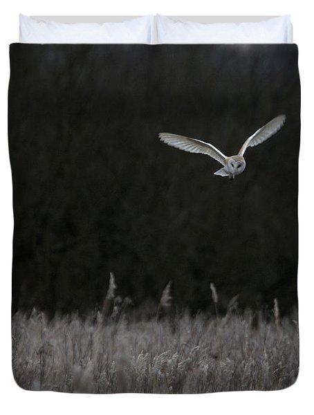 Barn Owl Hunting At Dusk Duvet Cover