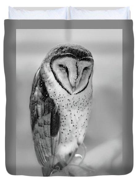 Barn Owl II Duvet Cover