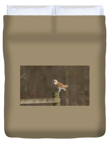 Barn Owl On Fence Duvet Cover
