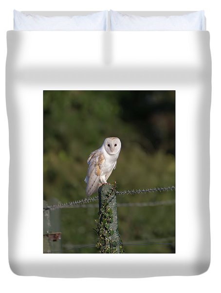 Barn Owl On Ivy Post Duvet Cover