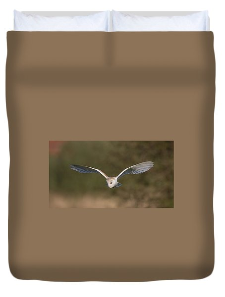 Barn Owl Quartering Duvet Cover