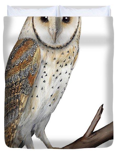 Barn Owl Screech Owl Tyto Alba - Effraie Des Clochers- Lechuza Comun- Tornuggla - Nationalpark Eifel Duvet Cover