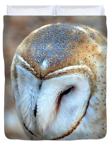 Barn Owle 1 Duvet Cover by Marty Koch