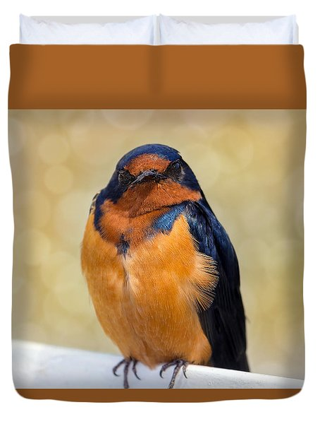 Barn Swallow Duvet Cover by David Gn
