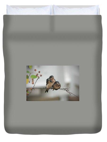 Barn Swallow Fledglings Duvet Cover