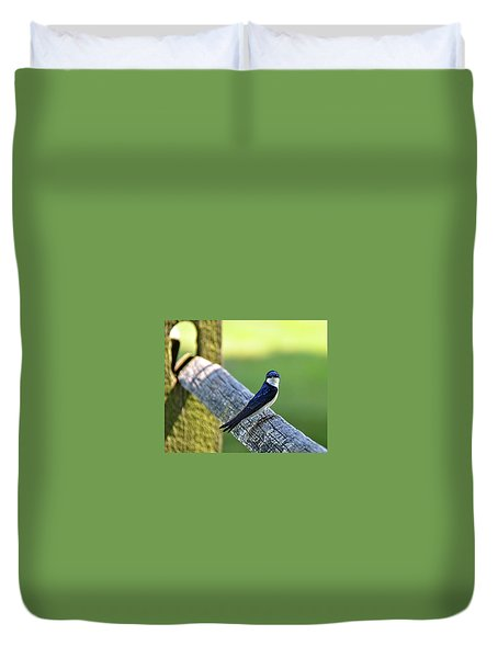 Barn Swallow Looking Angry Duvet Cover