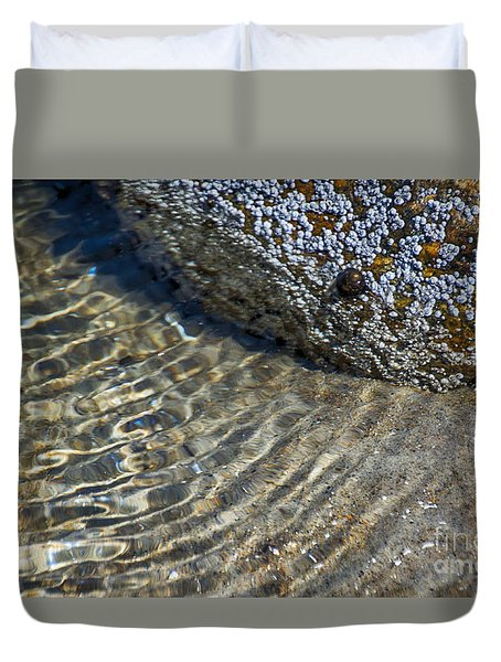 Barnacles And Reflection Duvet Cover