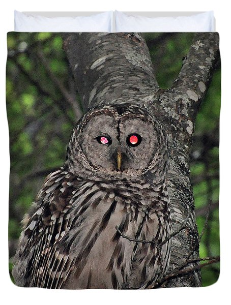 Duvet Cover featuring the photograph Barred Owl 3 by Glenn Gordon
