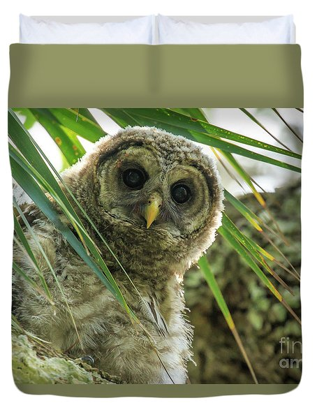 Barred Owl Duvet Cover