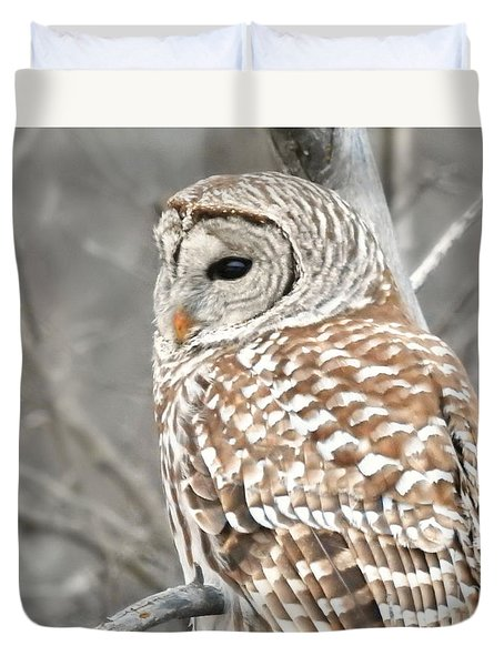 Barred Owl Close-up Duvet Cover by Kathy M Krause