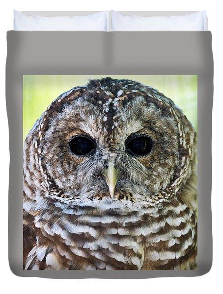 Barred Owl Closeup Duvet Cover