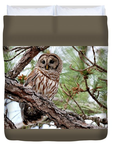 Barred Owl On Tree Branch Duvet Cover