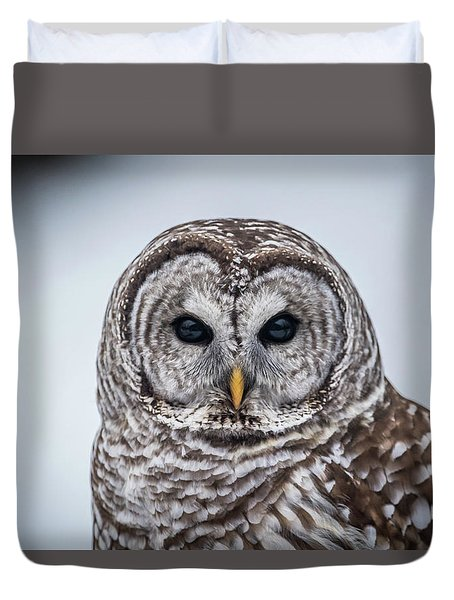 Duvet Cover featuring the photograph Barred Owl by Paul Freidlund