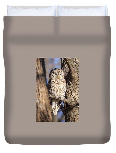 Barred Owl Duvet Cover