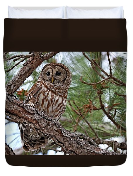 Barred Owl Perched In Tree Duvet Cover