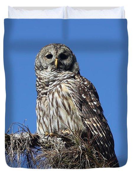 Barred Owl Portrait Duvet Cover