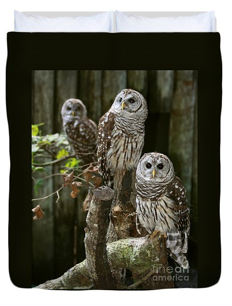Duvet Cover featuring the photograph Barred Owls On Watch by Myrna Bradshaw