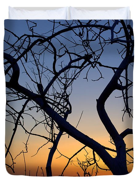 Duvet Cover featuring the photograph Barren Tree At Sunset by Lori Seaman