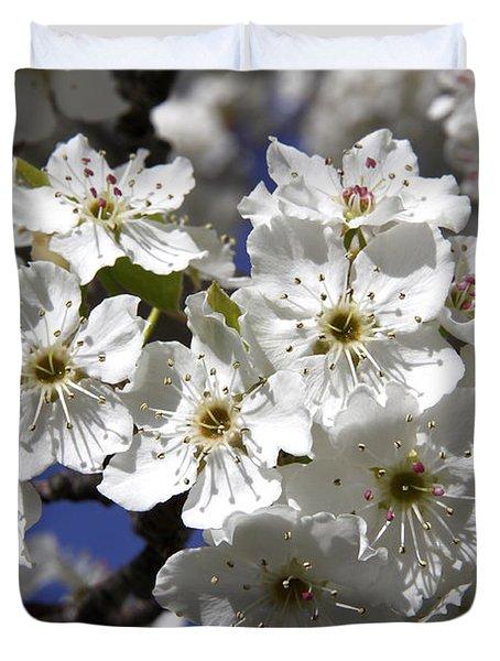 Bradford Pear Blossoms Duvet Cover